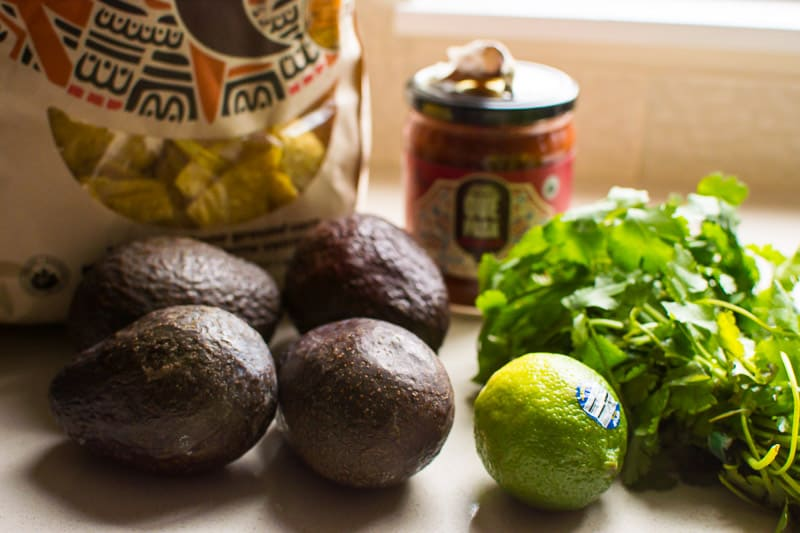 Salsa Guacamole Recipe with avocado, jarred salsa, garlic and cilantro in 5 minutes. No chopping and the best salsa I ever tried, better than Mexican.