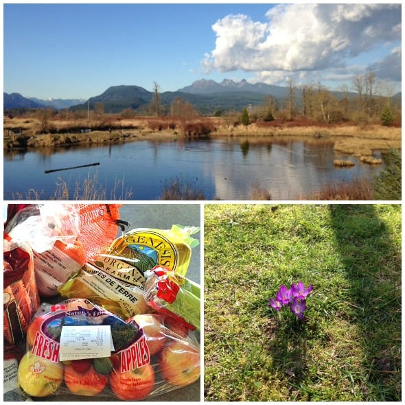 Collage of organic bagged apples, purple flowers and scene of moutains