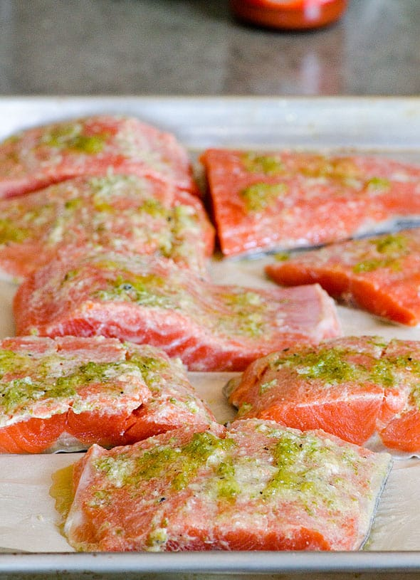 Marinated salmon on baking pan