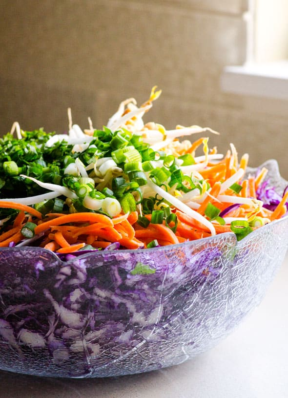 Peanut Slaw made with red cabbage, peanuts, bean sprouts, carrots and delicious simple clean peanut sauce. Easy coleslaw recipe that can be prepared ahead. | ifoodreal.com