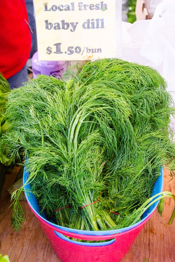 dill-farmers-market-must-buys