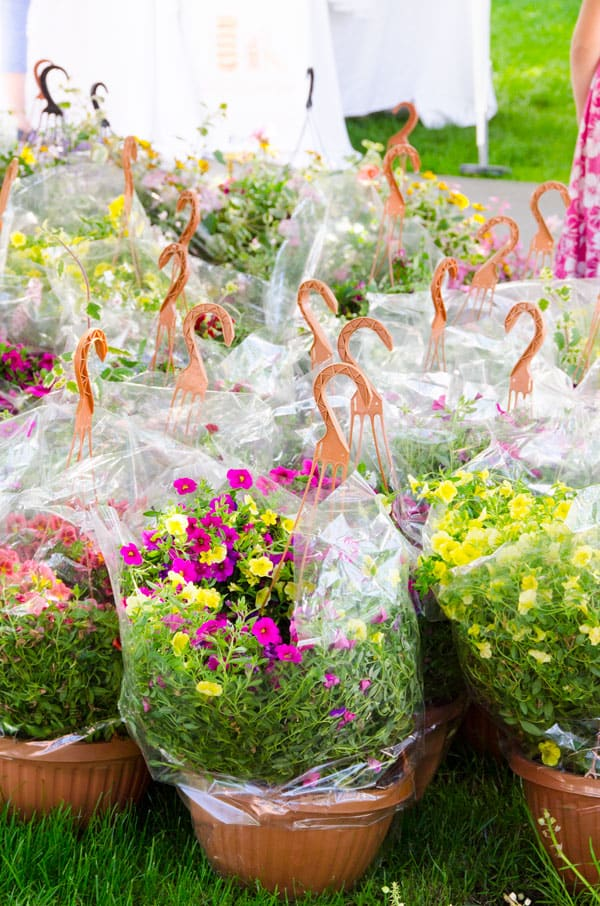 flowerbaskets-farmers-market-must-buys