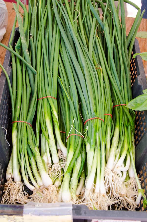 greenonions-farmers-market-must-buys