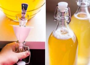 How to Make Kombucha Tea