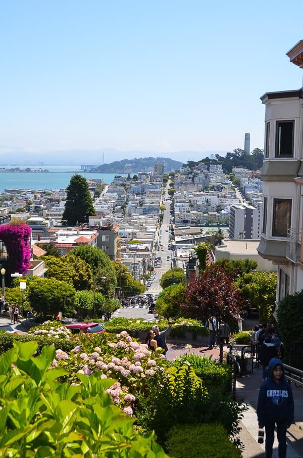 San Francisco Road Trip