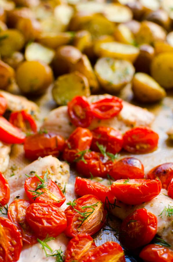 One Pan Chicken and Potatoes combined with tomatoes, oregano and garlic, then baked for an easy and tasty dinner. No other dirty bowls.