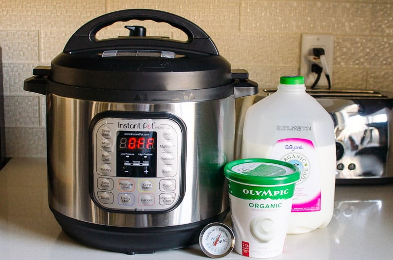 Instant Pot, a jug of milk, tub of yogurt and food thermometer on a counter
