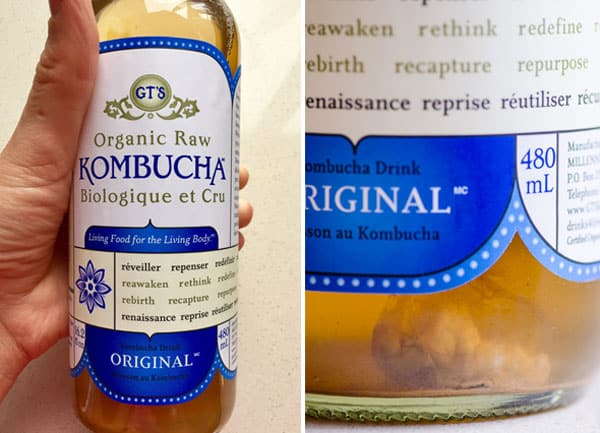 GT's plain kombucha to is a starter for kombucha mother