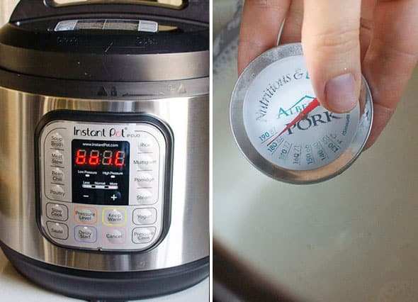 Instant Pot and measuring milk temperature with food thermometer