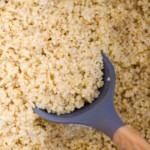 plain quinoa on wooden spoon