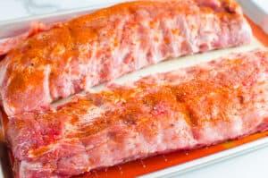 seasoned pork ribs with dry rub
