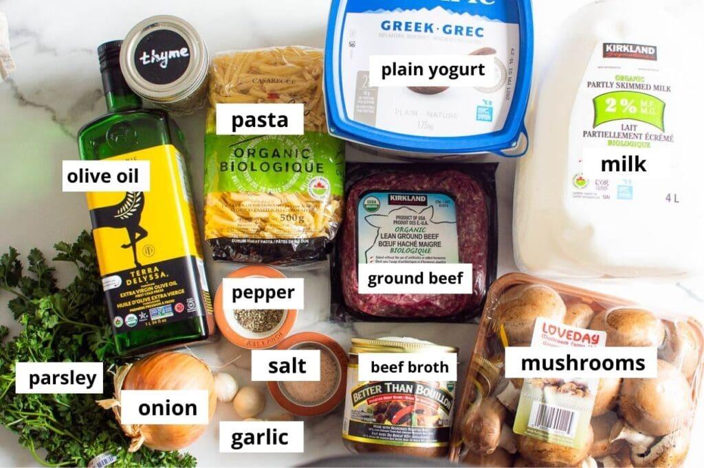 instant pot ground beef stroganoff ingredients