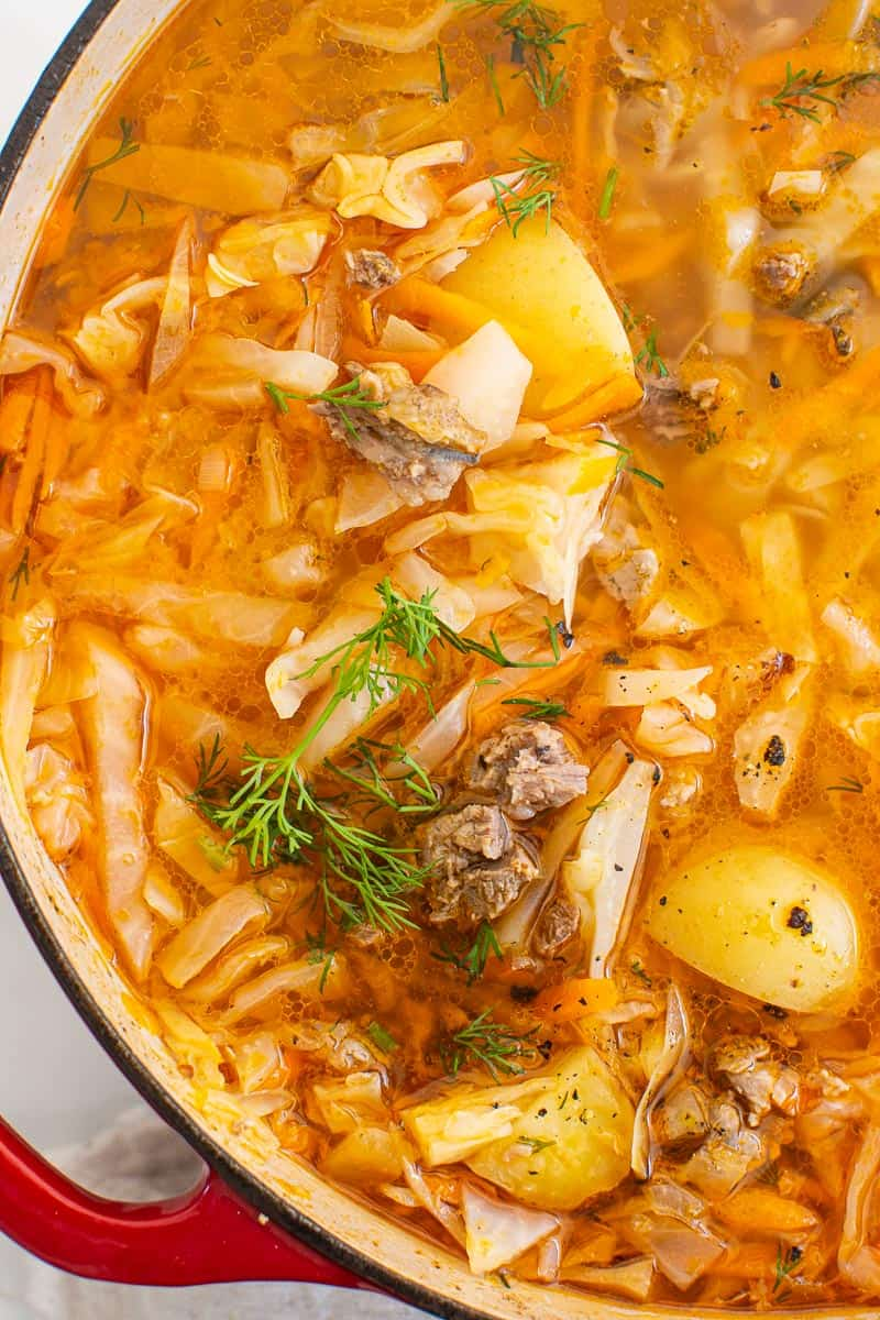 Cabbage Soup with beef, potatoes and garnished with dill