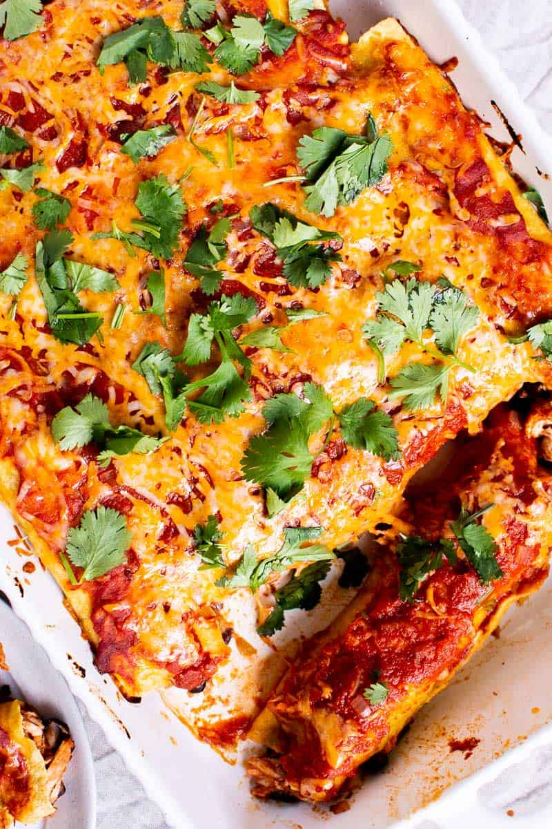 Chicken Enchiladas garnished with cilantro