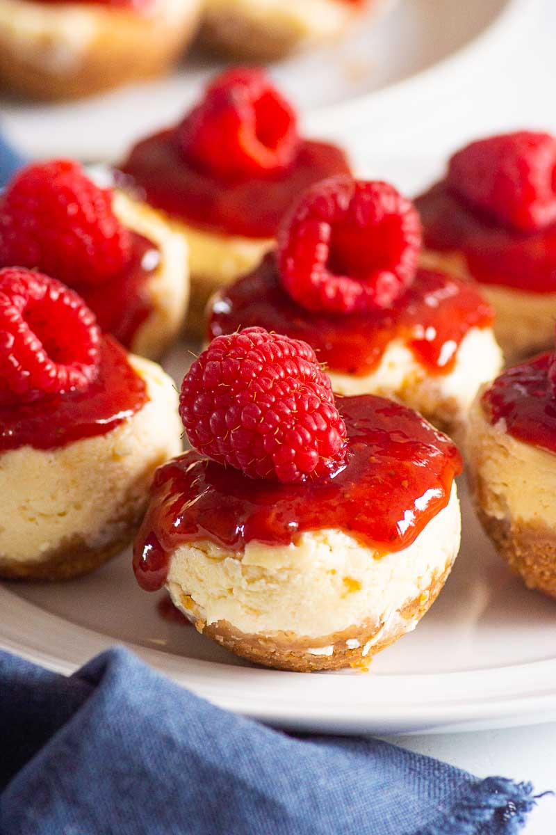 instant pot cheesecake bites recipe