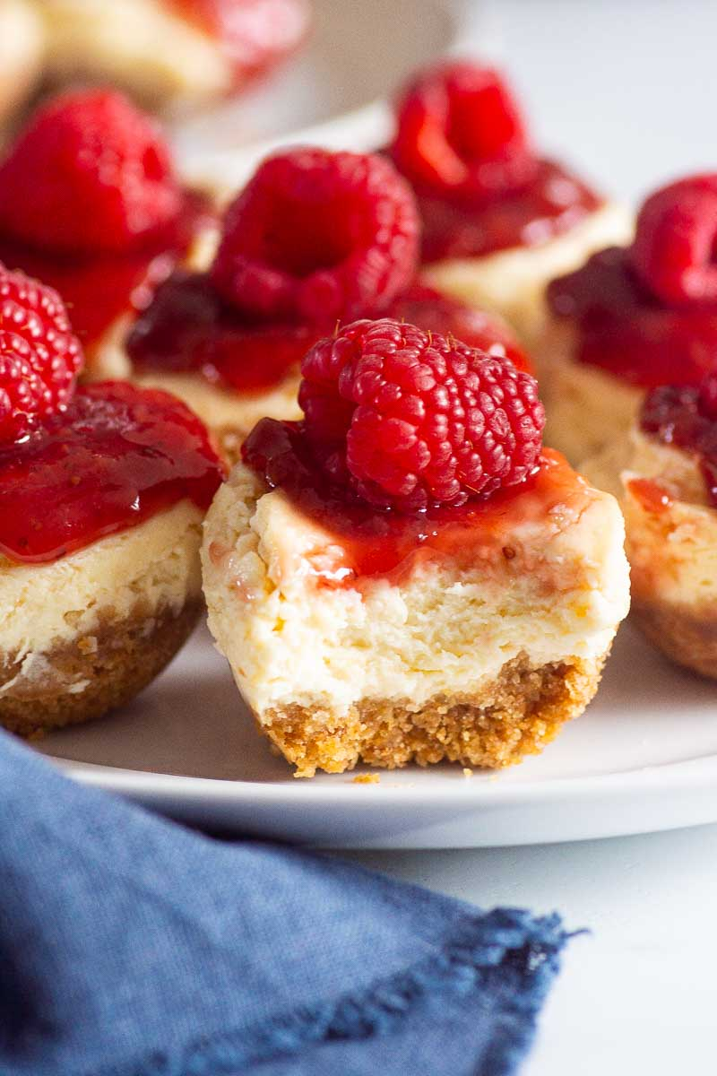 instant pot cheesecake bites closeup on white plate