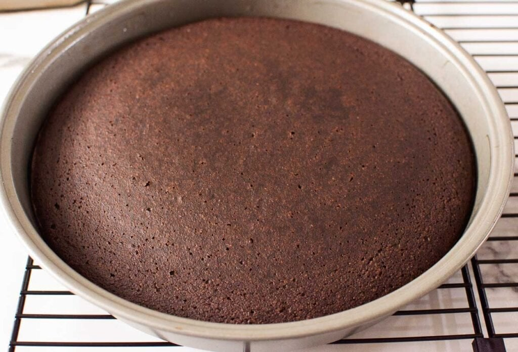 baked cake in a pan