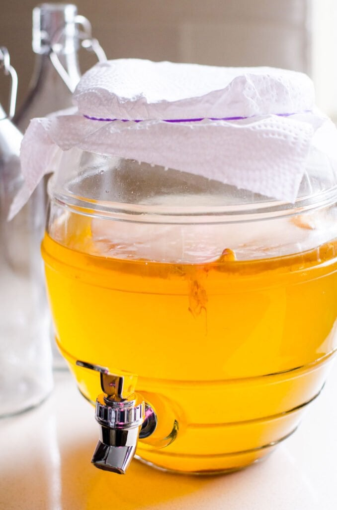 brewed kombucha in a glass container