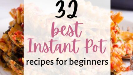 Best Instant Pot Recipes for Beginners